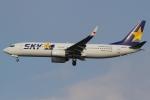 Wings Flapさんが、羽田空港で撮影したスカイマーク 737-8Q8の航空フォト(写真)