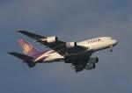 TAOTAOさんが、中部国際空港で撮影したタイ国際航空 A380-841の航空フォト(写真)