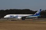 MOHICANさんが、福岡空港で撮影した全日空 787-881の航空フォト(写真)