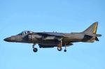 382kossyさんが、厚木飛行場で撮影したアメリカ海兵隊 AV-8B Harrier II+の航空フォト(写真)