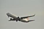 うめたろうさんが、関西国際空港で撮影した日本航空 737-846の航空フォト(写真)