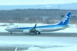 daisuke1228さんが、新千歳空港で撮影した全日空 737-881の航空フォト(写真)