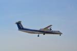 toyoquitoさんが、伊丹空港で撮影したANAウイングス DHC-8-402Q Dash 8の航空フォト(写真)
