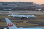 taniocchi-skyさんが、羽田空港で撮影した日本航空 767-346/ERの航空フォト(写真)
