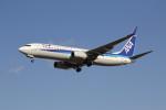utarou on NRTさんが、成田国際空港で撮影した全日空 737-881の航空フォト(写真)