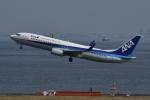 そらまめさんが、羽田空港で撮影した全日空 737-881の航空フォト(写真)
