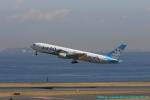 taniocchi-skyさんが、羽田空港で撮影したAIR DO 767-381の航空フォト(写真)