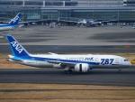 えぬえむさんが、羽田空港で撮影した全日空 787-881の航空フォト(写真)