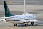 maverickさんが、羽田空港で撮影したサウジアラビア財務省 737-7FGの航空フォト(写真)