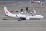富士のこまきさんが、中部国際空港で撮影した日本航空 737-846の航空フォト(写真)