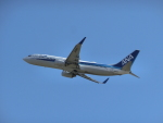 JA655Jさんが、米子空港で撮影した全日空 737-881の航空フォト(写真)