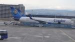 AE31Xさんが、フランクフルト国際空港で撮影したコンドル 767-330/ERの航空フォト(写真)