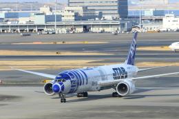 おっしーさんが、羽田空港で撮影した全日空 787-9の航空フォト(写真)
