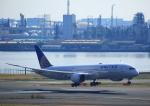 タミーさんが、羽田空港で撮影したユナイテッド航空 787-9の航空フォト(写真)