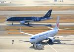 タミーさんが、羽田空港で撮影したスターフライヤー A320-214の航空フォト(写真)