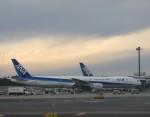 flyflygoさんが、成田国際空港で撮影した全日空 777-381/ERの航空フォト(写真)
