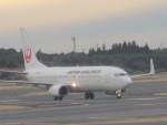 flyflygoさんが、成田国際空港で撮影した日本航空 737-846の航空フォト(写真)