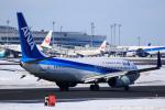 noriphotoさんが、新千歳空港で撮影した全日空 737-881の航空フォト(写真)