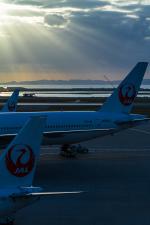 岡崎美合さんが、那覇空港で撮影した日本航空 777-346の航空フォト(写真)
