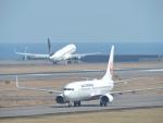 F.KAITOさんが、宮崎空港で撮影した日本航空 737-846の航空フォト(写真)