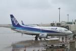 camelliaさんが、那覇空港で撮影したANAウイングス 737-54Kの航空フォト(写真)