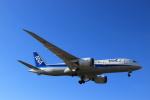 蒲田賢二さんが、成田国際空港で撮影した全日空 787-881の航空フォト(写真)