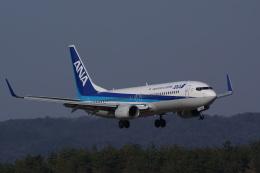HEATHROWさんが、岡山空港で撮影した全日空 737-881の航空フォト(写真)