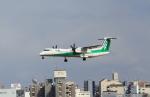 213atさんが、伊丹空港で撮影したANAウイングス DHC-8-402Q Dash 8の航空フォト(写真)