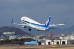 213atさんが、伊丹空港で撮影した全日空 737-881の航空フォト(写真)