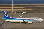 安芸あすかさんが、羽田空港で撮影した全日空 737-881の航空フォト(写真)