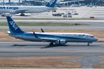 ぎんじろーさんが、羽田空港で撮影した全日空 737-881の航空フォト(写真)