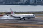 ぎんじろーさんが、羽田空港で撮影した日本航空 737-846の航空フォト(写真)