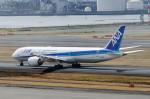 ぎんじろーさんが、羽田空港で撮影した全日空 787-9の航空フォト(写真)
