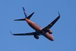 GOOSEMAN777さんが、成田国際空港で撮影した全日空 737-881の航空フォト(写真)