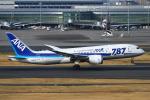 りんたろうさんが、羽田空港で撮影した全日空 787-881の航空フォト(写真)
