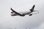 サトヤンさんが、成田国際空港で撮影したスカンジナビア航空 A321-231の航空フォト(写真)