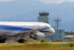わかすぎさんが、小松空港で撮影した全日空 A320-211の航空フォト(写真)