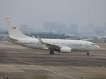 nagareboshiさんが、伊丹空港で撮影したアメリカ空軍 C-40C BBJ (737-7CP)の航空フォト(写真)