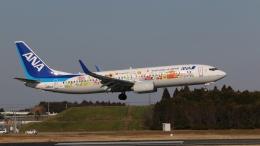 raichanさんが、成田国際空港で撮影した全日空 737-881の航空フォト(写真)