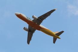 Koenig117さんが、成田国際空港で撮影したセブパシフィック航空 A320-214の航空フォト(写真)
