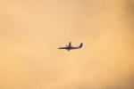 kix大好きカズチャマンさんが、伊丹空港で撮影したANAウイングス DHC-8-402Q Dash 8の航空フォト(写真)