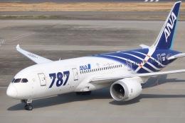 tyusonさんが、羽田空港で撮影した全日空 787-881の航空フォト(写真)