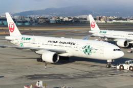 水月さんが、伊丹空港で撮影した日本航空 777-246の航空フォト(写真)