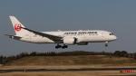 raichanさんが、成田国際空港で撮影した日本航空 787-846の航空フォト(写真)