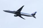 twining07さんが、羽田空港で撮影した全日空 777-381/ERの航空フォト(写真)