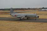 中村ひろのりさんが、入間飛行場で撮影した航空自衛隊 YS-11A-402EAの航空フォト(写真)