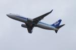 twining07さんが、羽田空港で撮影した全日空 737-881の航空フォト(写真)