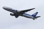 twining07さんが、羽田空港で撮影した全日空 777-281の航空フォト(写真)