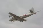 中村ひろのりさんが、厚木飛行場で撮影した海上自衛隊 UP-3Cの航空フォト(写真)