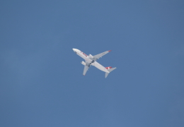 Koenig117さんが、成田国際空港で撮影したティーウェイ航空 737-8ASの航空フォト(写真)